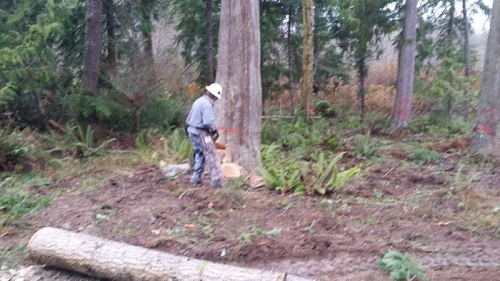 Landscaping Services Sequim